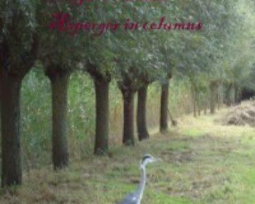 Wendy Schuchmann - Vreemde Vogel